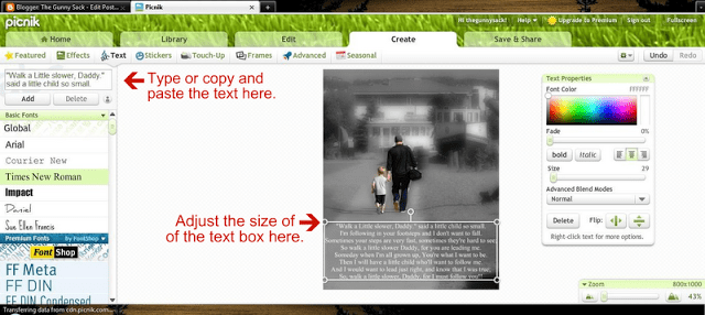screenshot of how to add text