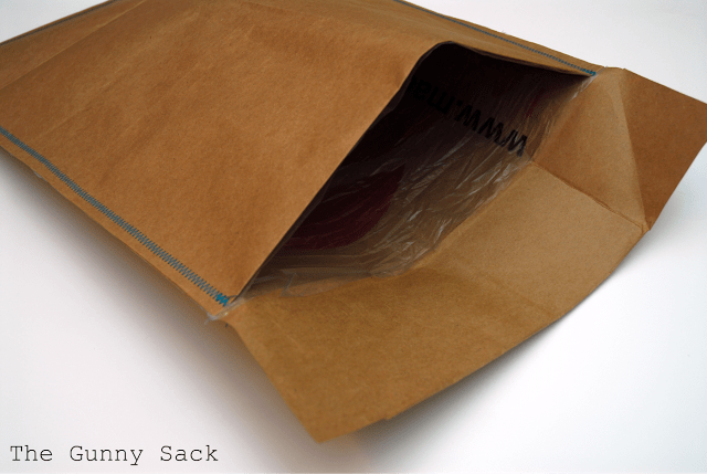 open brown bag envelope with plastic lining