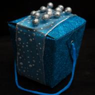 Guest Post: Teen Christmas Gift Idea