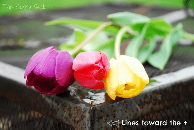brighter tulips