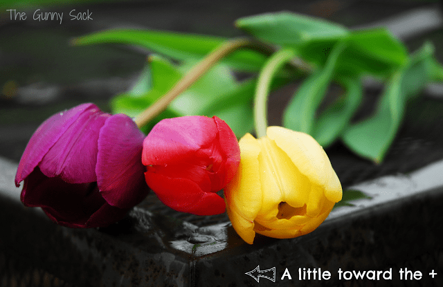 brighter image of tulips