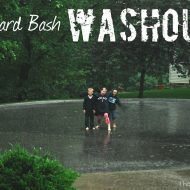 {ConAgra} Backyard Bash WASHOUT