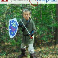 Zelda Link Costume
