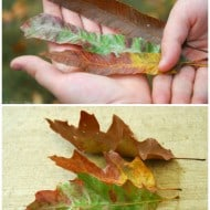 DIY Autumn Leaf Feathers