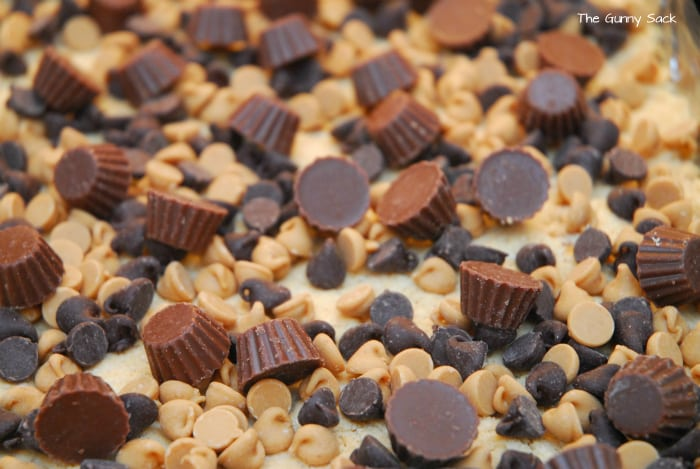 Add Reese's Peanut Butter Cup Minis