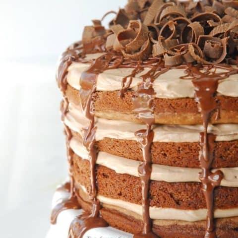 Nutella and Chocolate Torte Recipe