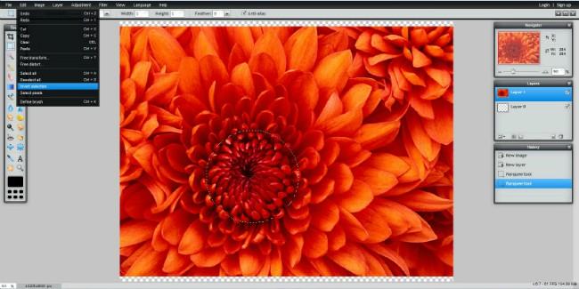 Pixlr Tutorial Invert Selection