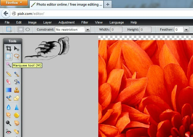 Marquee Tool Pixlr How To