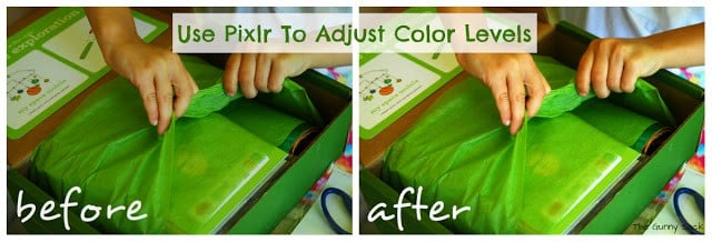 How To Adjust Color Level With Pixlr