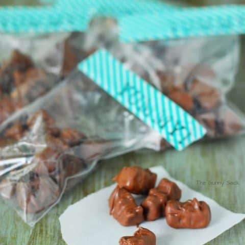 Chocolate Covered Gummy Bears