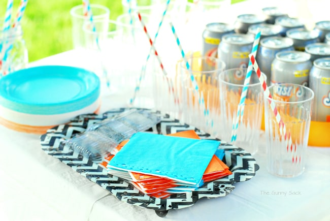 Outdoor Summer Party Napkins