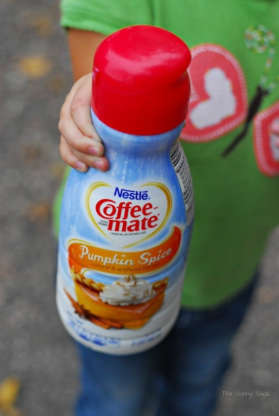 Nestle Coffee-mate Pumpkin Spice #shop