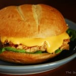 Slow Cooker Barbecue Chicken Sandwiches