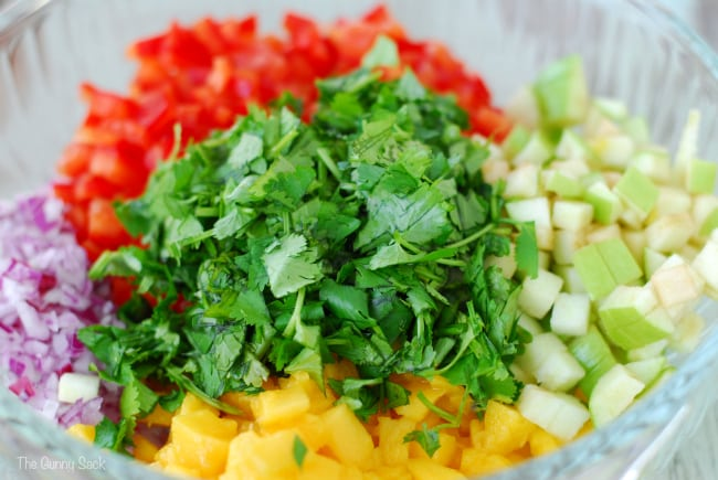 Apple Mango salsa ingredients in bowl
