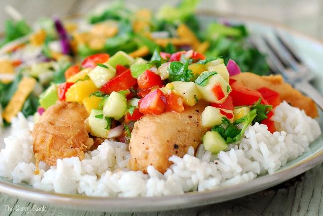 Apple Recipes Chicken Salsa