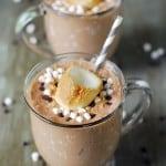 Smores Milkshake Recipe