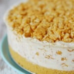 Peanut butter crunch ice cream cake recipe