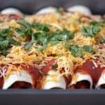 Chicken Enchiladas in a pan