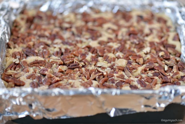 Salted pecan fudge
