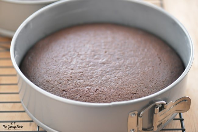 Chocolate Layer Cake in Springform Pan