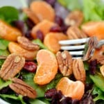 Citrus Salad Recipe | thegunnysack.com