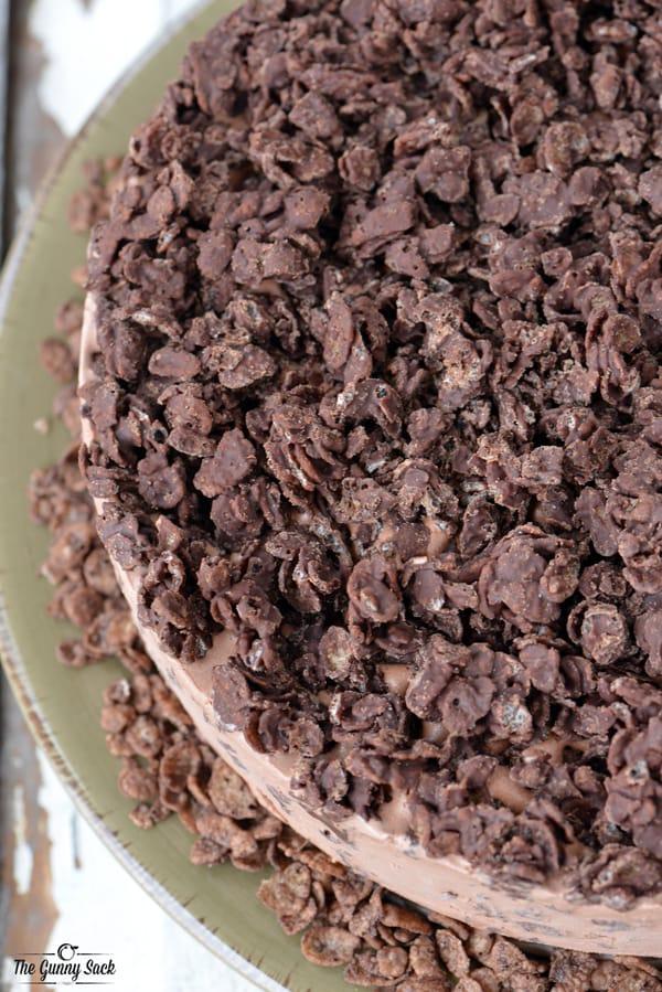 Crispy Chocolate Ice Cream Cake top view