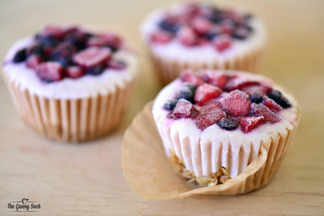 Frozen Yogurt Cupcakes | thegunnysack.com