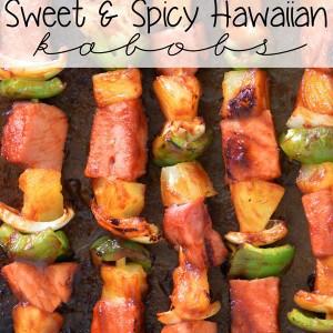 Sweet and Spicy Hawaiian Kabobs Recipe | thegunnysack.com