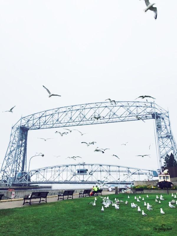 Arial Lift Bridge Sea Gulls Canal Park Duluth, Minnesota | thegunnysack.com