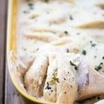 Cheese-Stuffed-Shells-With-Alfredo-Sauce-Recipe