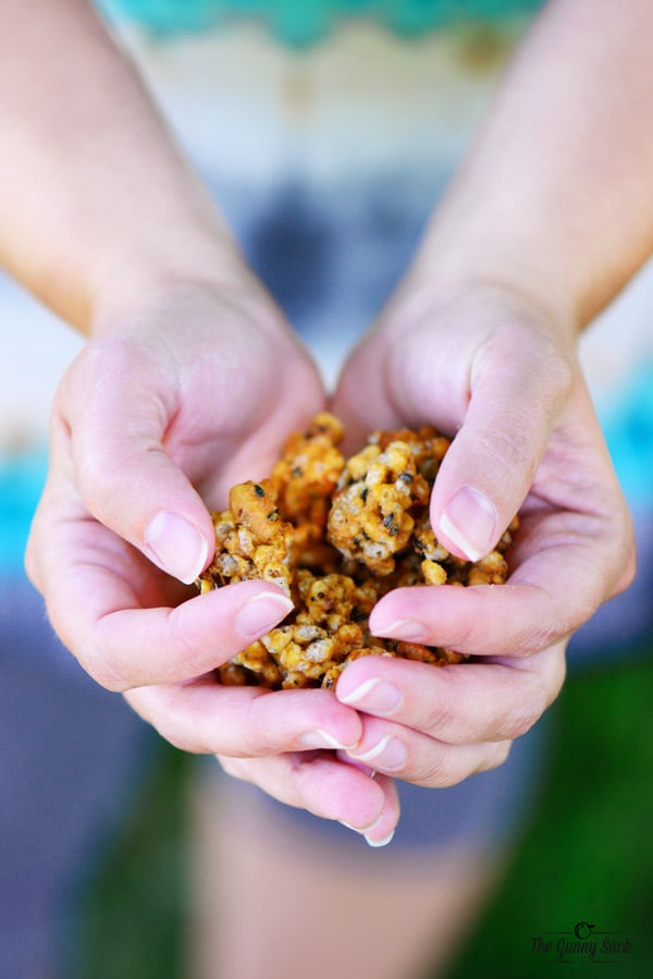 Handful Soy Vay Popped Rice Clusters