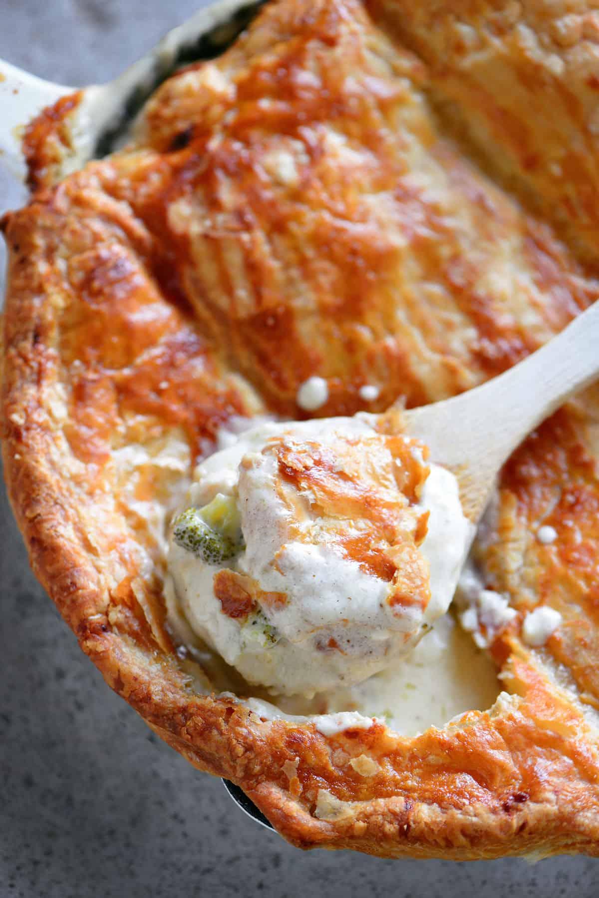 chicken alfredo pot pie in a pan