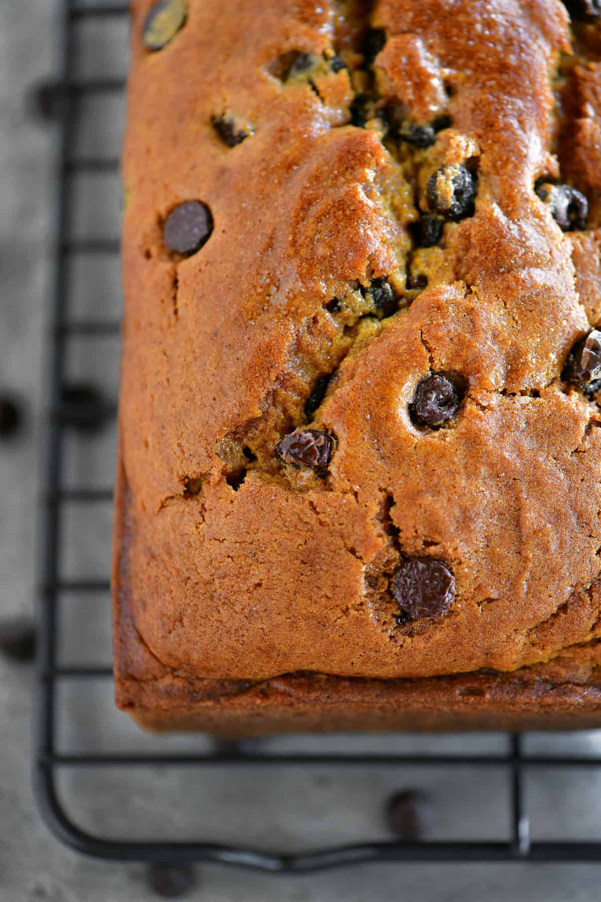 pumpkin chocolate chip bread cooling rack