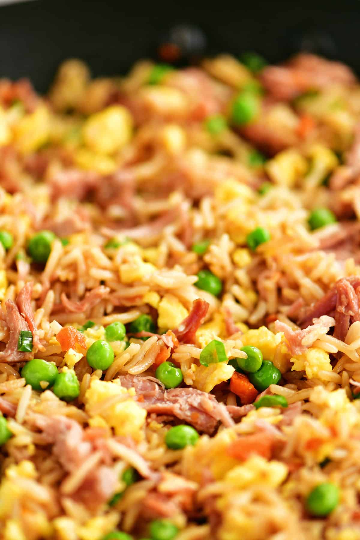 pork fried rice close up