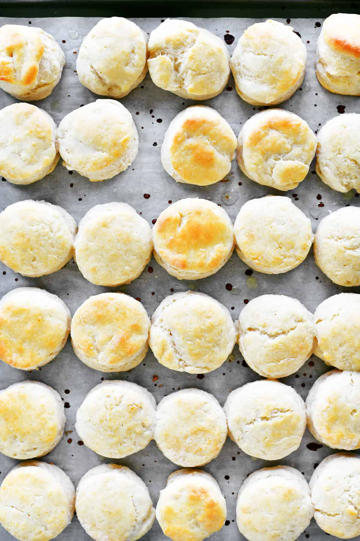 baked mini biscuits on a baking sheet