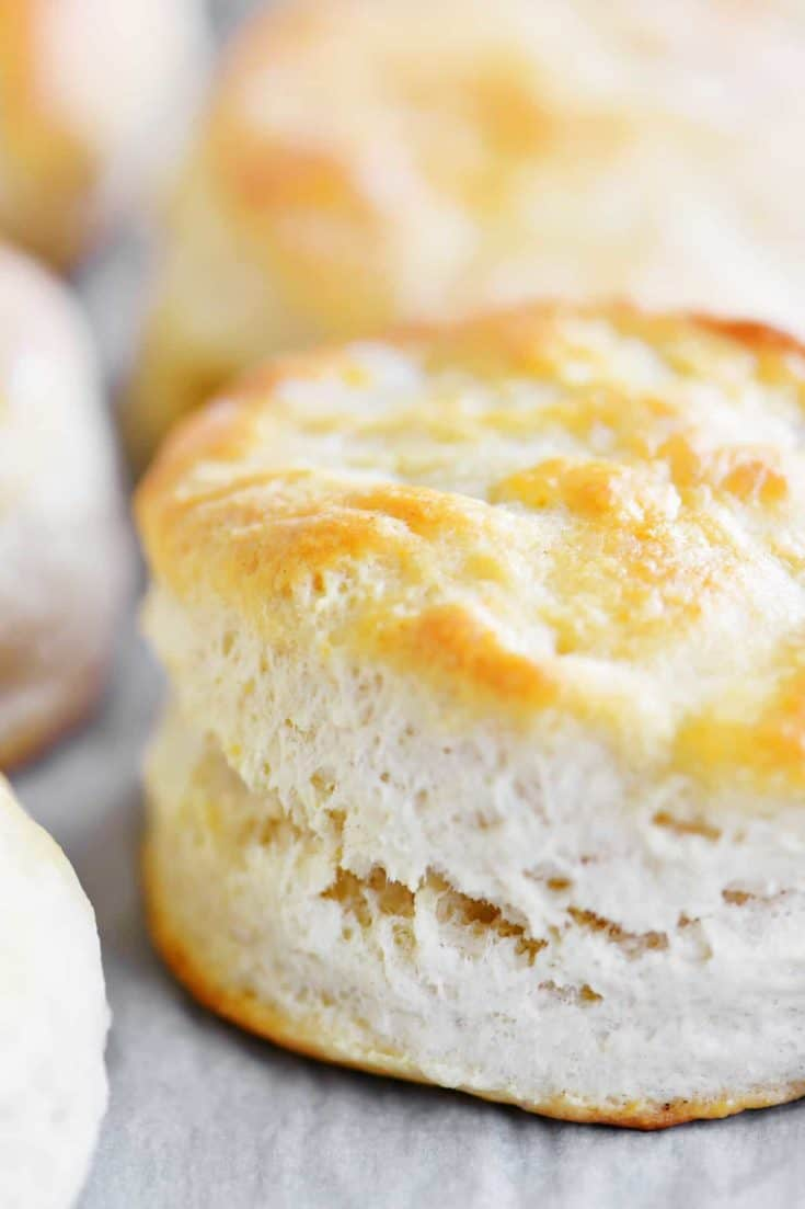 Bisquick Biscuits With Buttermilk The Gunny Sack