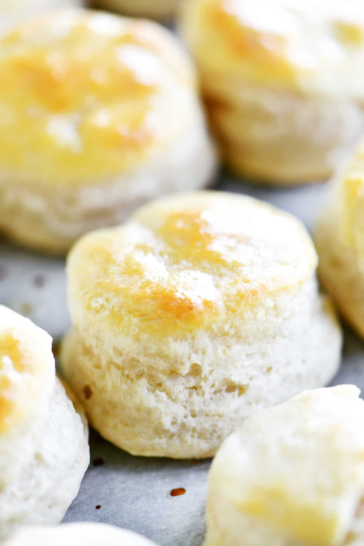 baked mini biscuit from side
