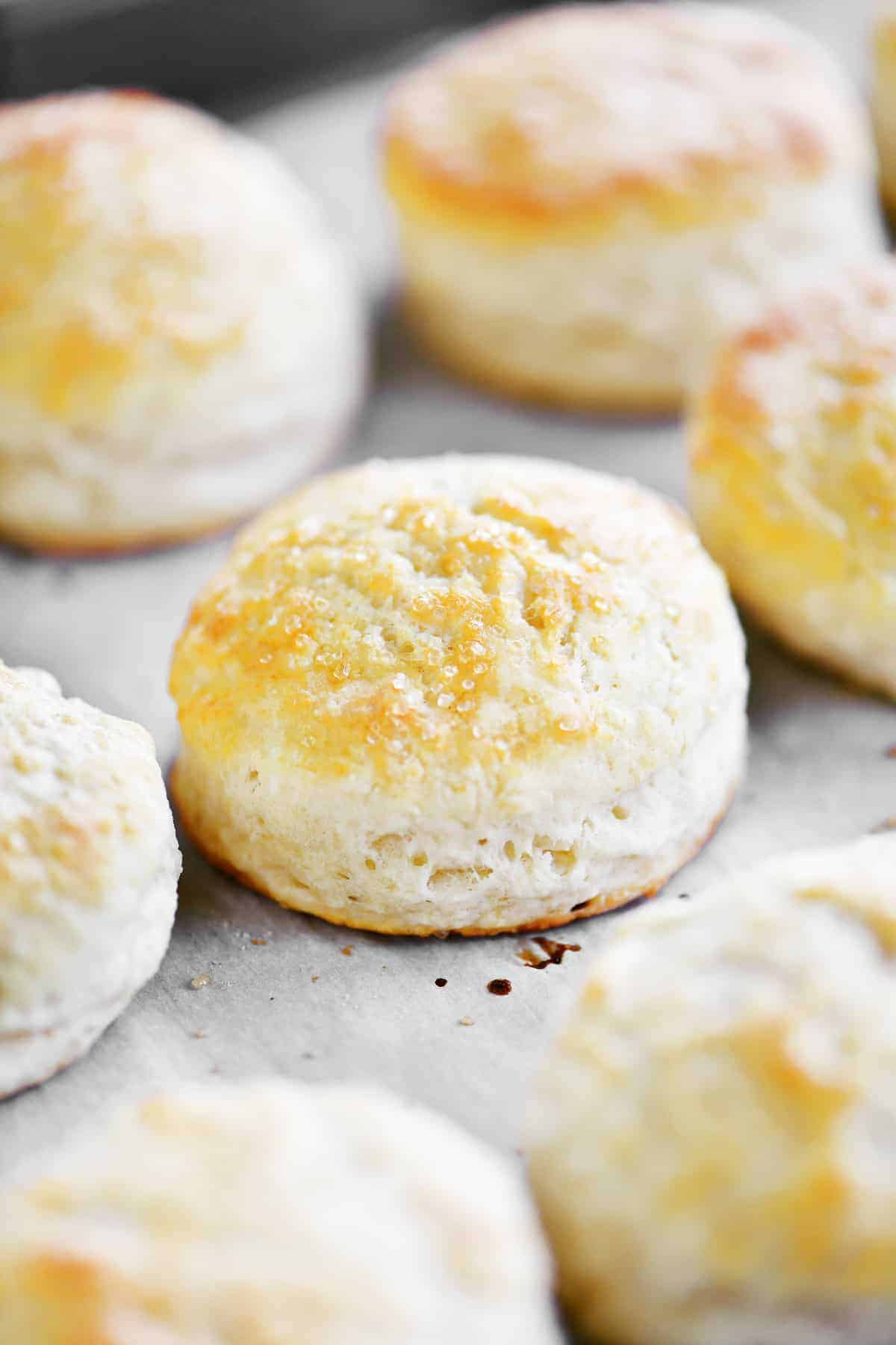 side view of baked shortcakes