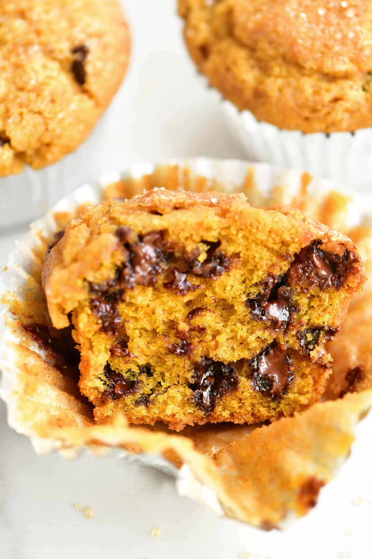 a warm delicious pumpkin muffin with gooey chocolate chips