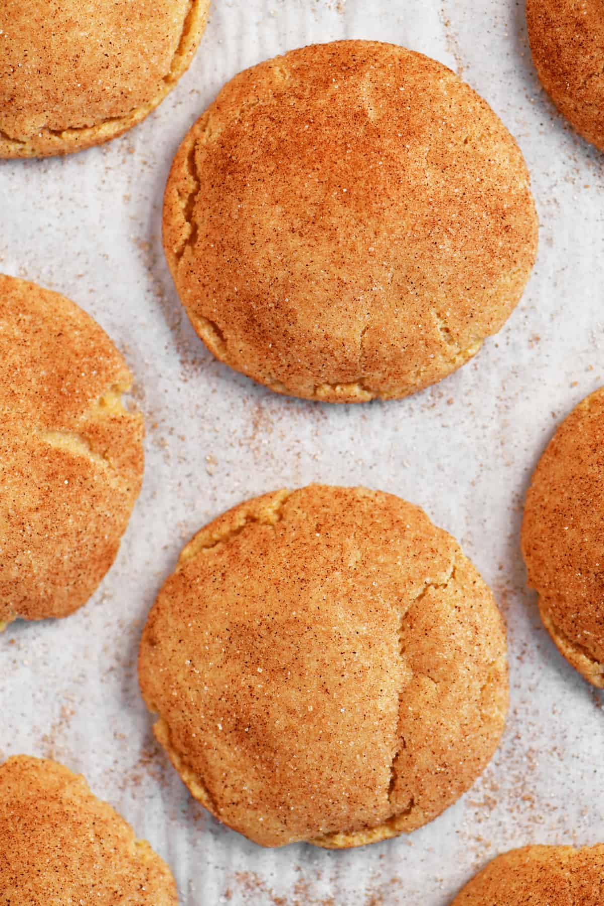 a close-up photo of the snickerdoodles