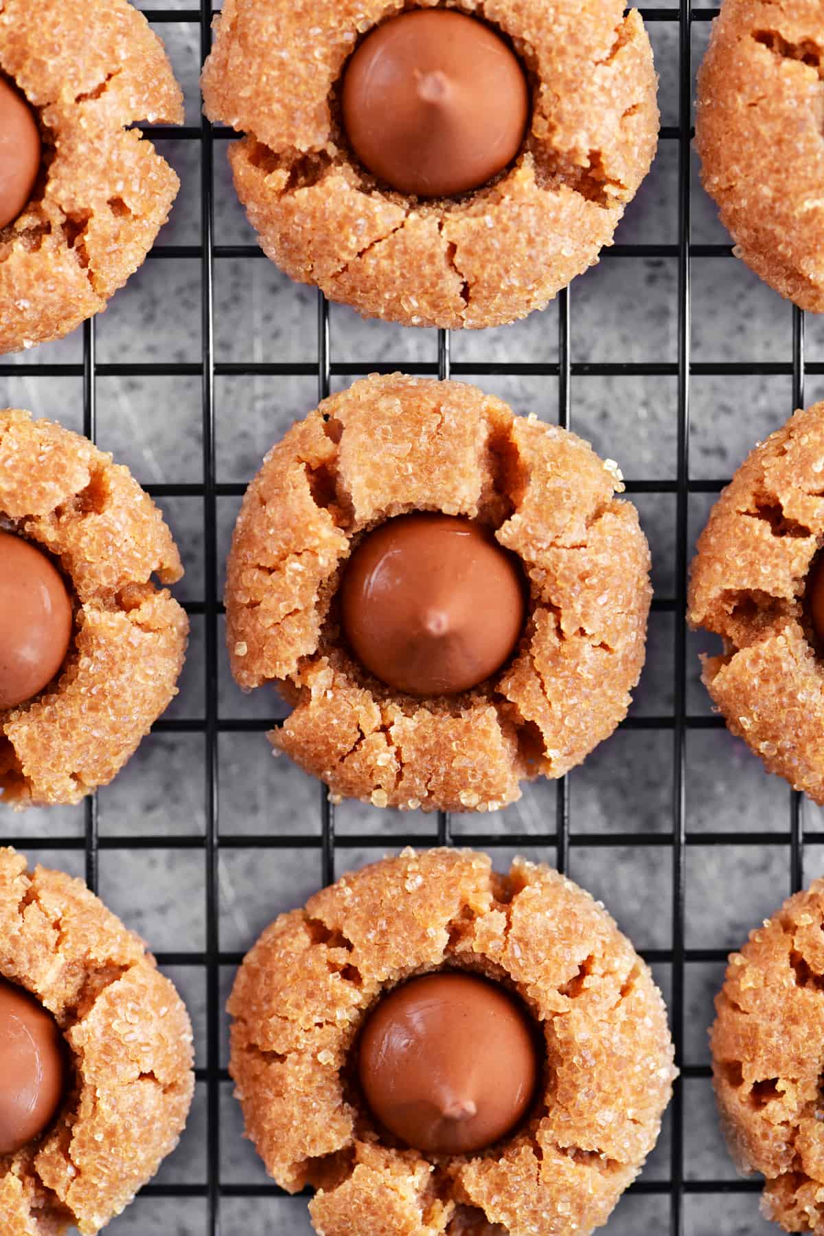 a close-up photo of the peanut butter blossoms cookies from above