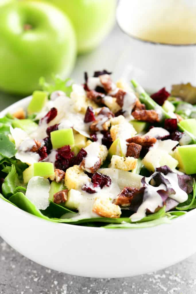 white bowl with a salad topped with apples and cranberries